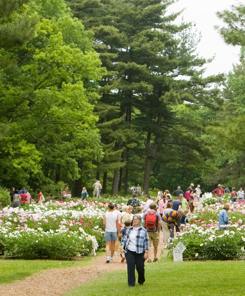 Other area museums include the Matthaei Botanical Gardens & Nichols Arboretum